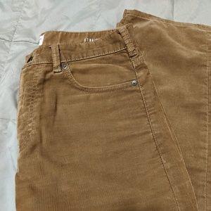 Men's Dockers Corduroy Straight Leg Pants 30 x 32